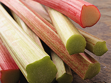 Forced Rhubarb - Ingredients Image - Arthur David